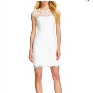 Adrianna Papell Cap Sleeve Lace Illusion Dress